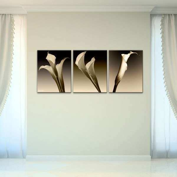 Bruce Bain 3 Lillies Canvas Wall Art 3 piece Set