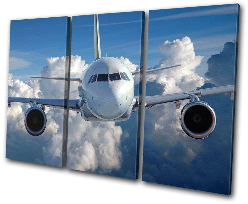 Transportation Airplane Jumbo Jet TREBLE CANVAS WALL ART