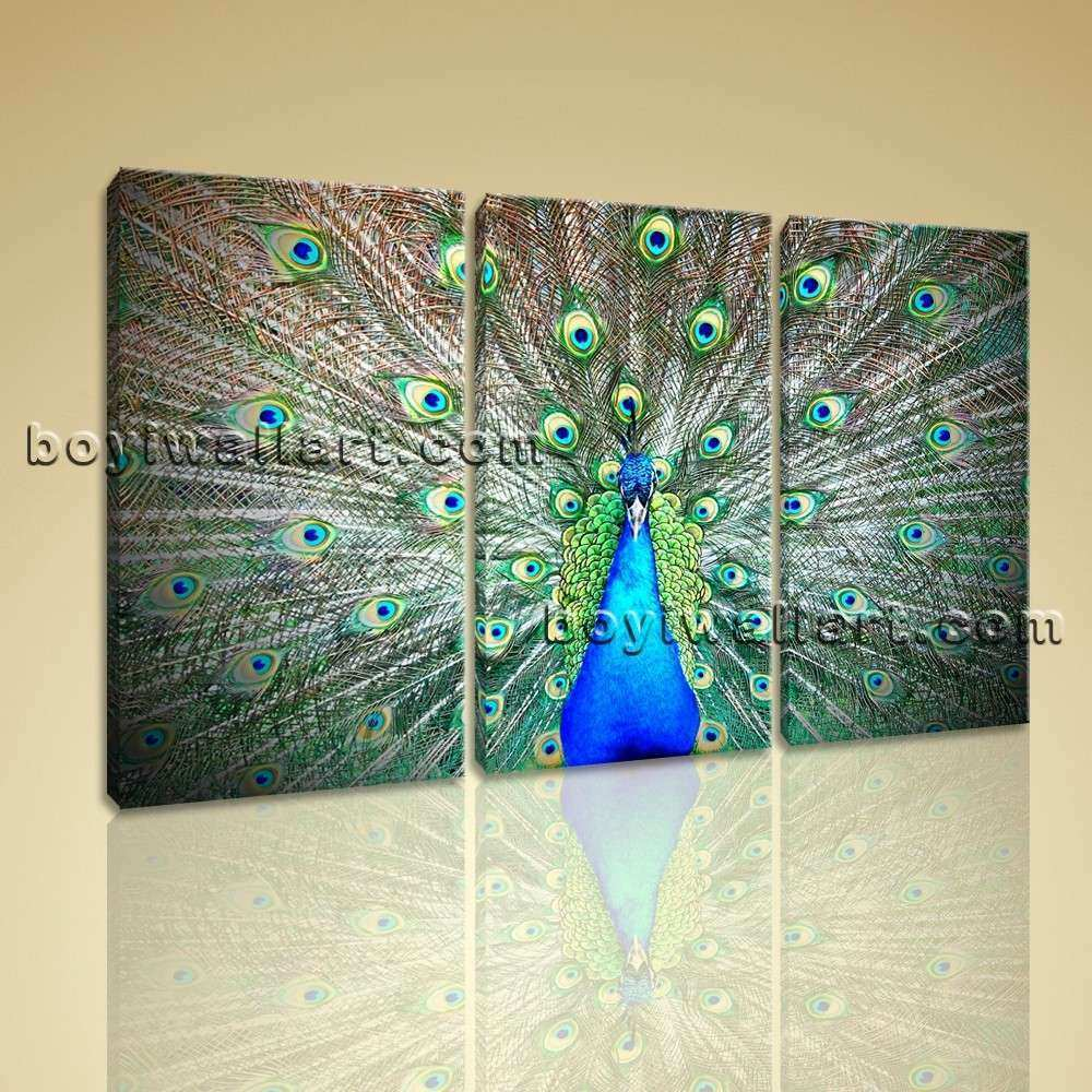 Print Stretched Canvas Peacock Green Bird Home