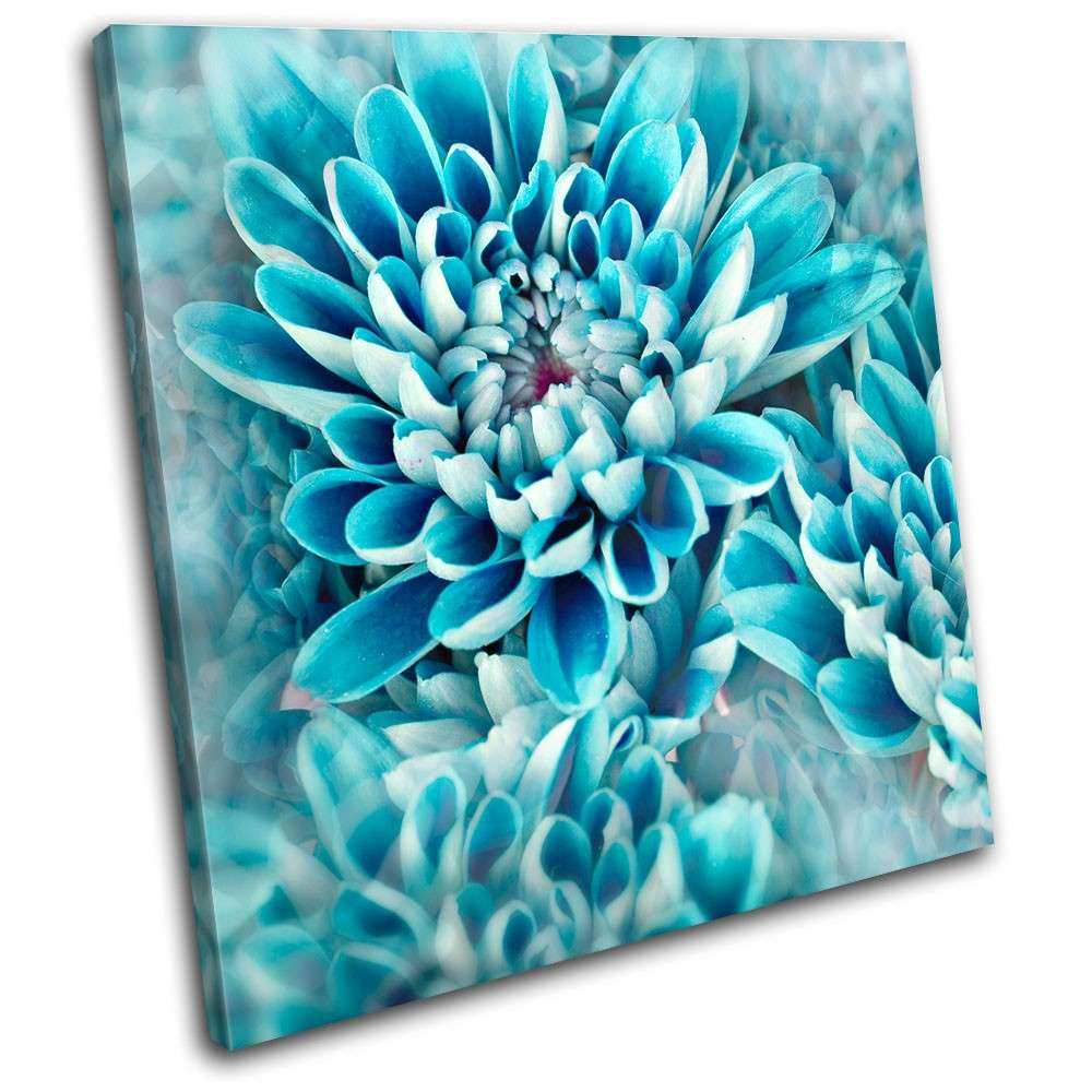 Zinnia blue flower Floral SINGLE CANVAS WALL ART Picture