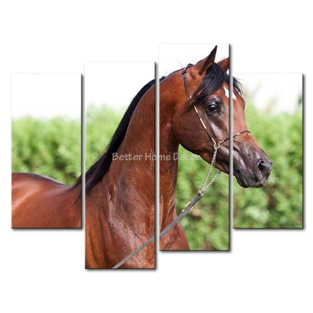 Horse Canvas Wall Art Awesome 3 Piece Painting Brown Picture Print