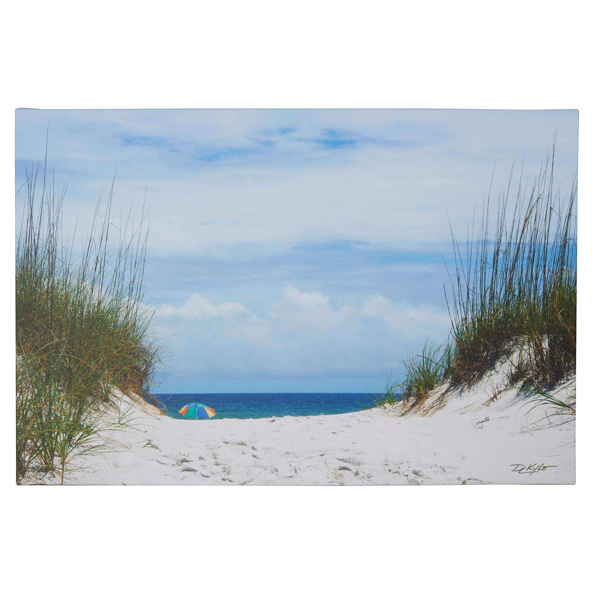Beachcrest Home Ocean Path graphic Print on Wrapped