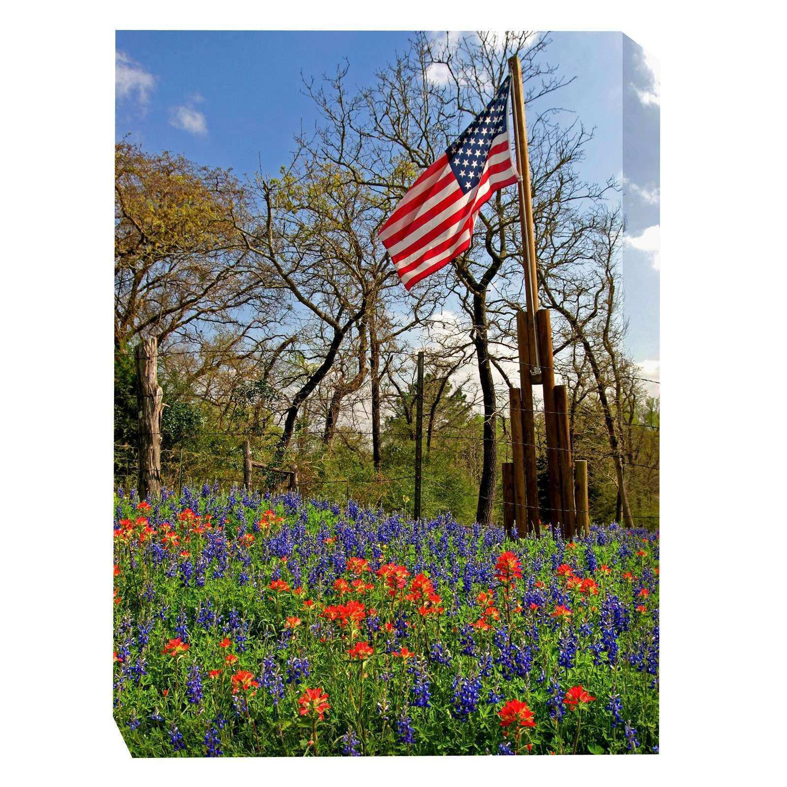 West of the Wind Country Pride Outdoor Canvas Art