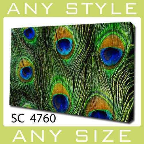 Contemporary Modern PEACOCK FEATHERS Wall Art Décor Canvas