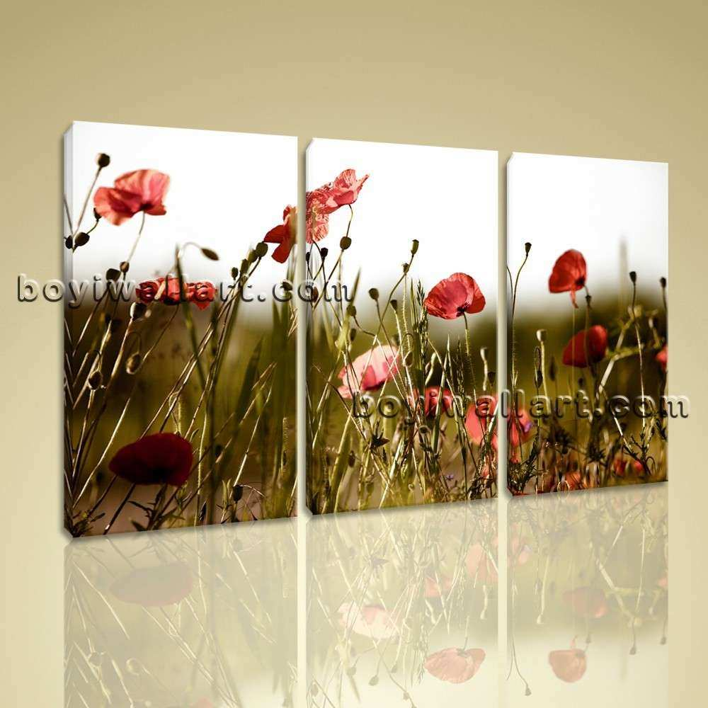 Contemporary Floral Wall Art Poppy Flower Canvas