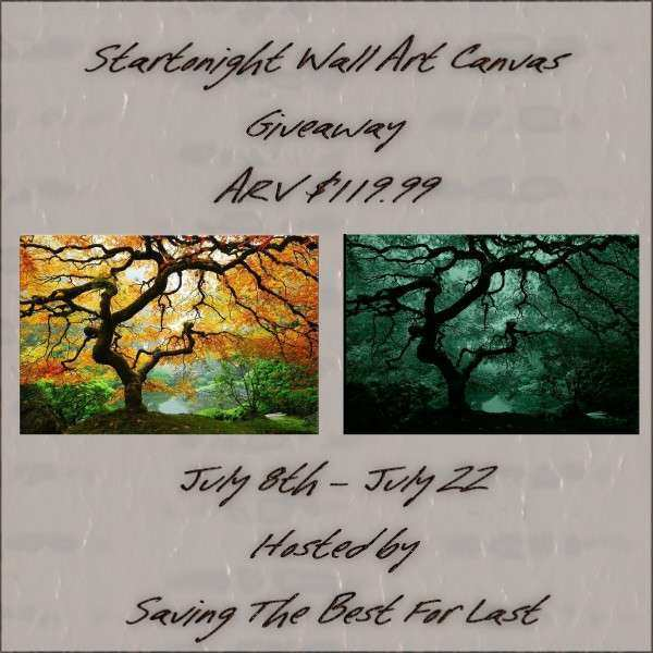 Startonight Wall Art Canvas Giveaway – Box Roundup