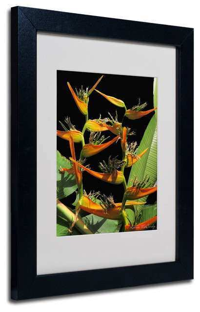Trademark Fine Art Tropical Paradise Matted Framed