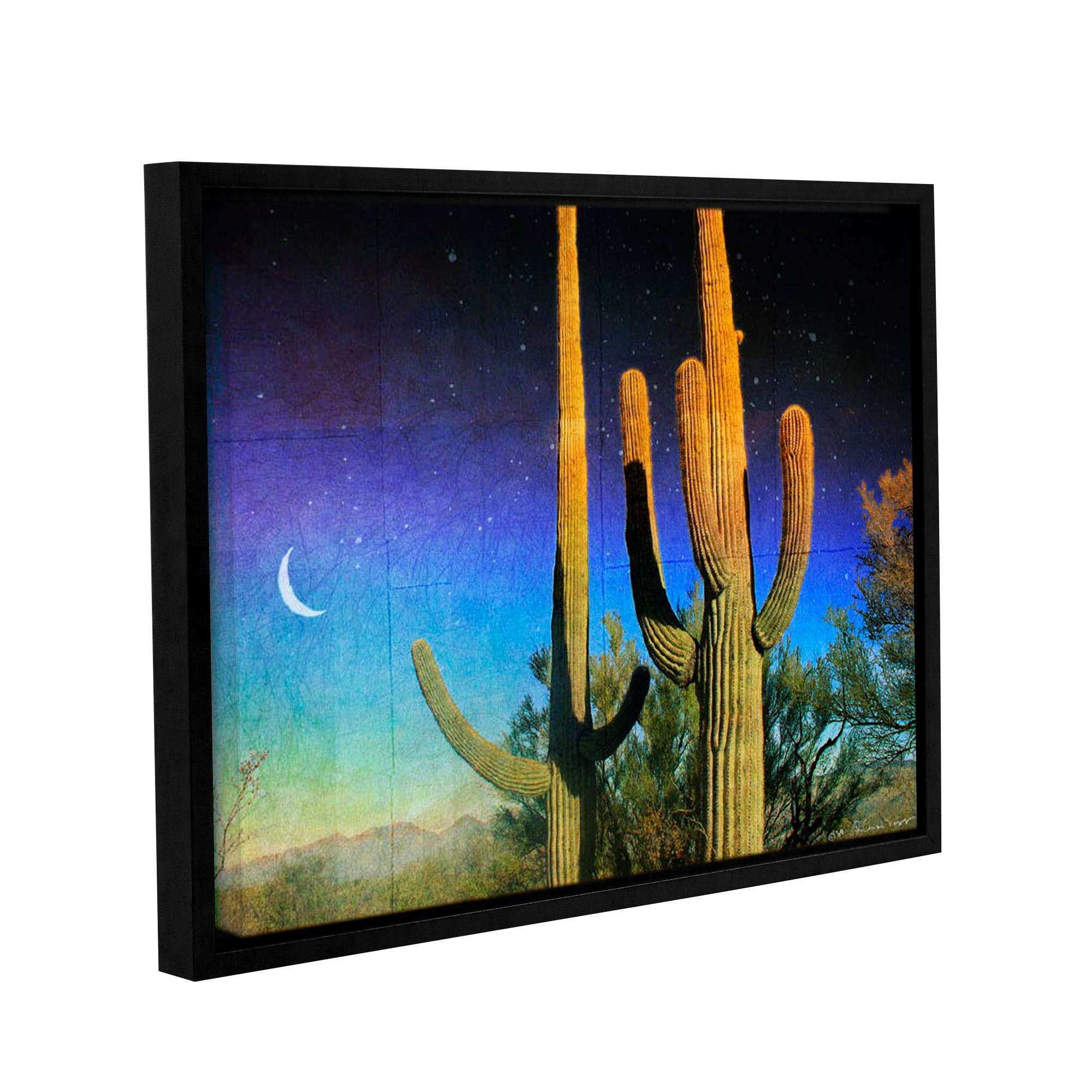 Loon Peak Possible Saguaro Framed Graphic Art on Wrapped