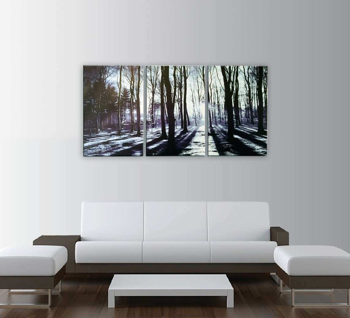 Sunrise In The Forest 3 piece Art Print