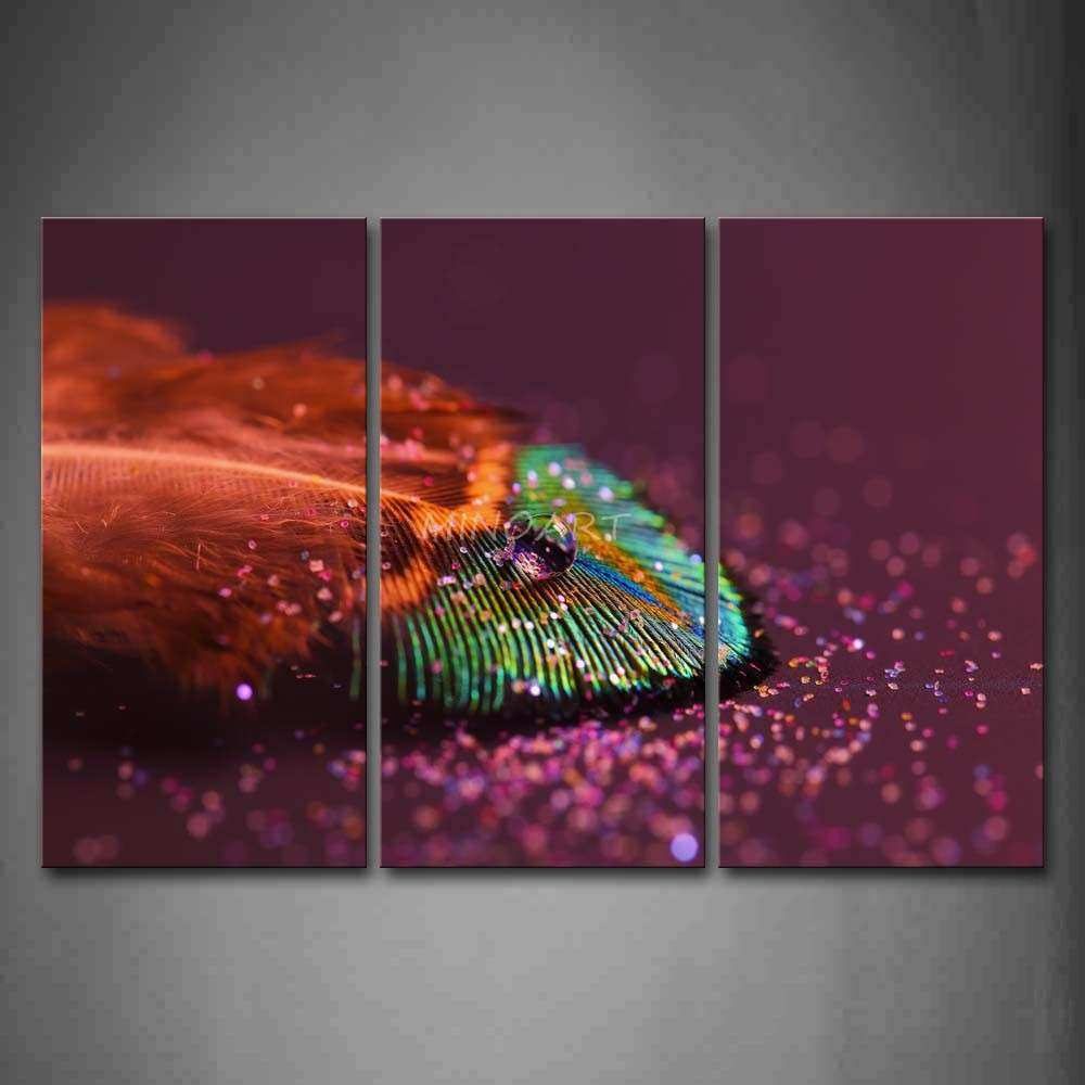 3 Piece Wall Art Painting Peacock Feather Floor Picture