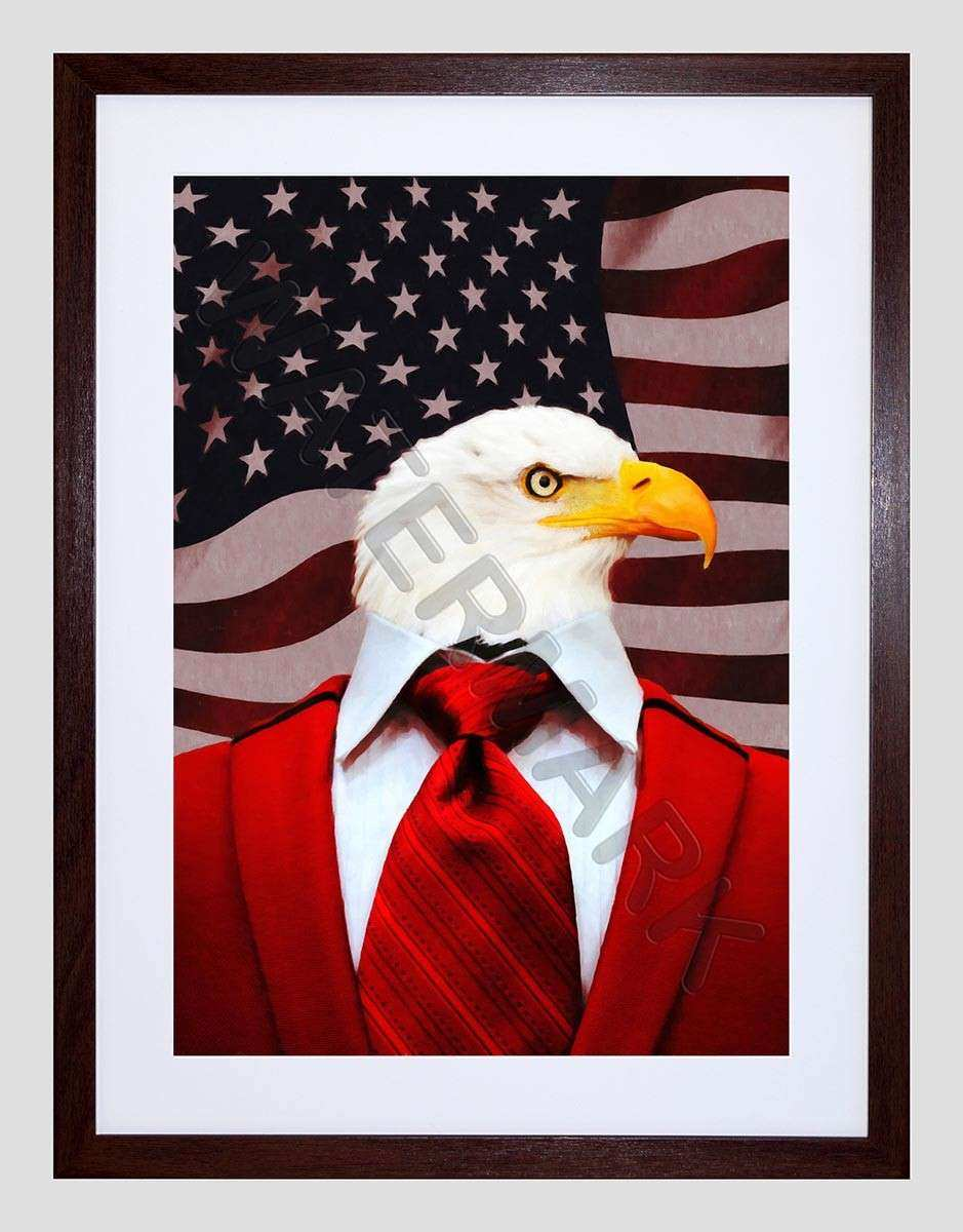 EAGLE IN A SUIT AMERICAN FLAG FRAMED PRINT WALL ART F12X