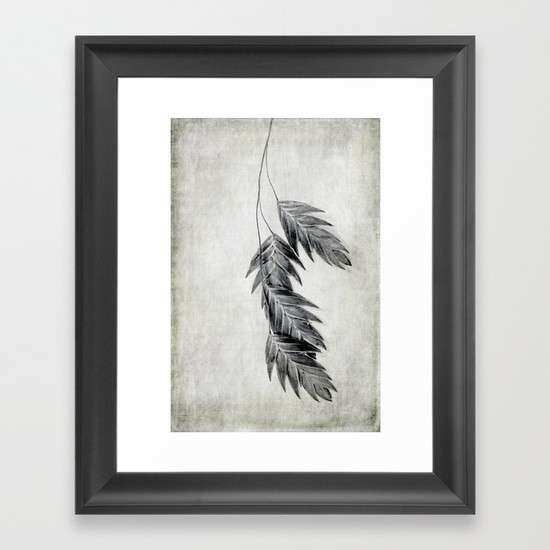 black and white oats Framed Art Print by Bonnie Jakobsen