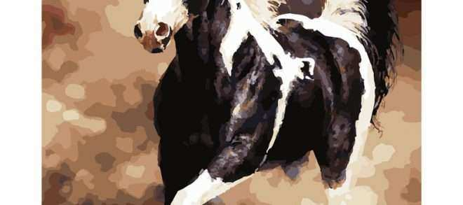 Black and White Horse Wall Art Luxury Animal Black and White Horse Diy Digital Painting by