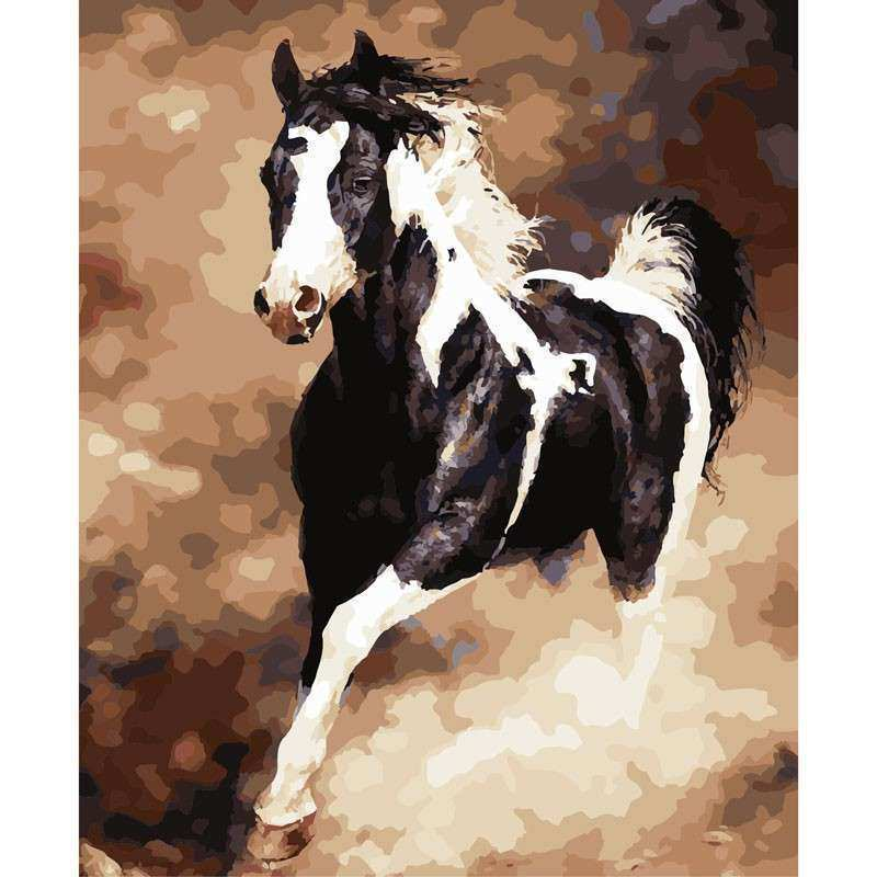 Animal Black and white horse DIY Digital Painting By