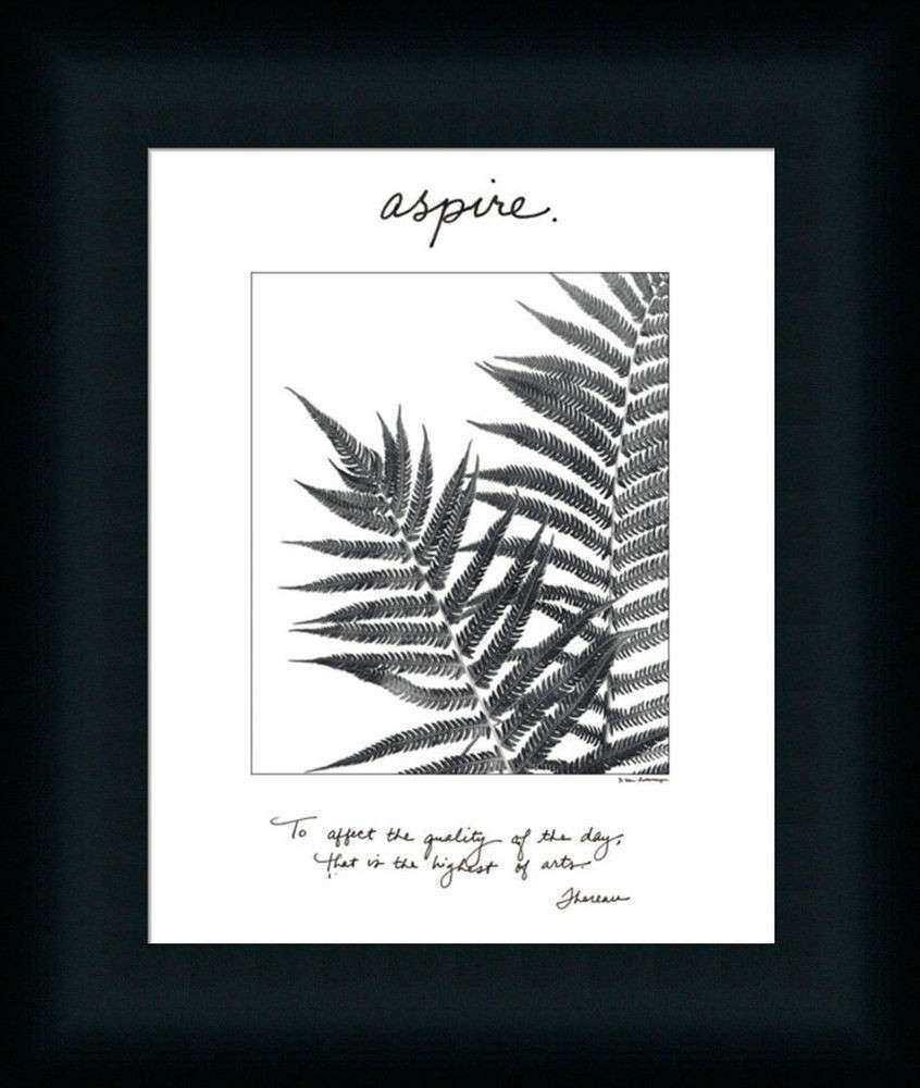 Aspire Fern Black White graphy Framed Art Print Wall