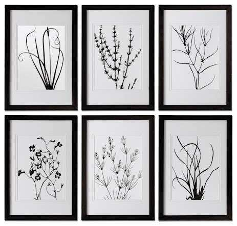 Black and White Leaves Framed Art Traditional Artwork