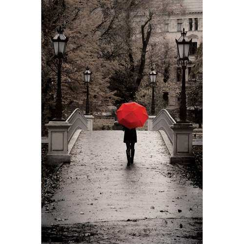 "Canvas Wall Art Black & White with Red Umbrella 21 5"" x"