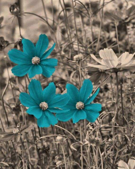 Brown Teal Blue Flowers Wall Art Home Decor by