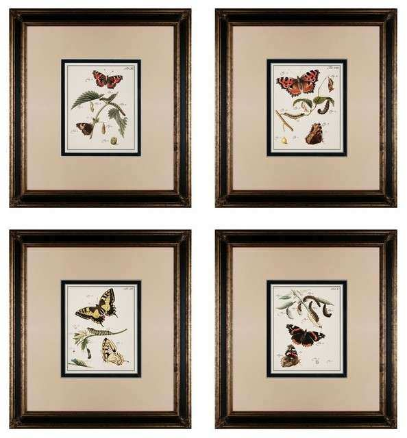 "Butterfly Framed Wall Art Beautiful Sterling butterfly Metamorphosis 23""x21"" Framed Wall Art"