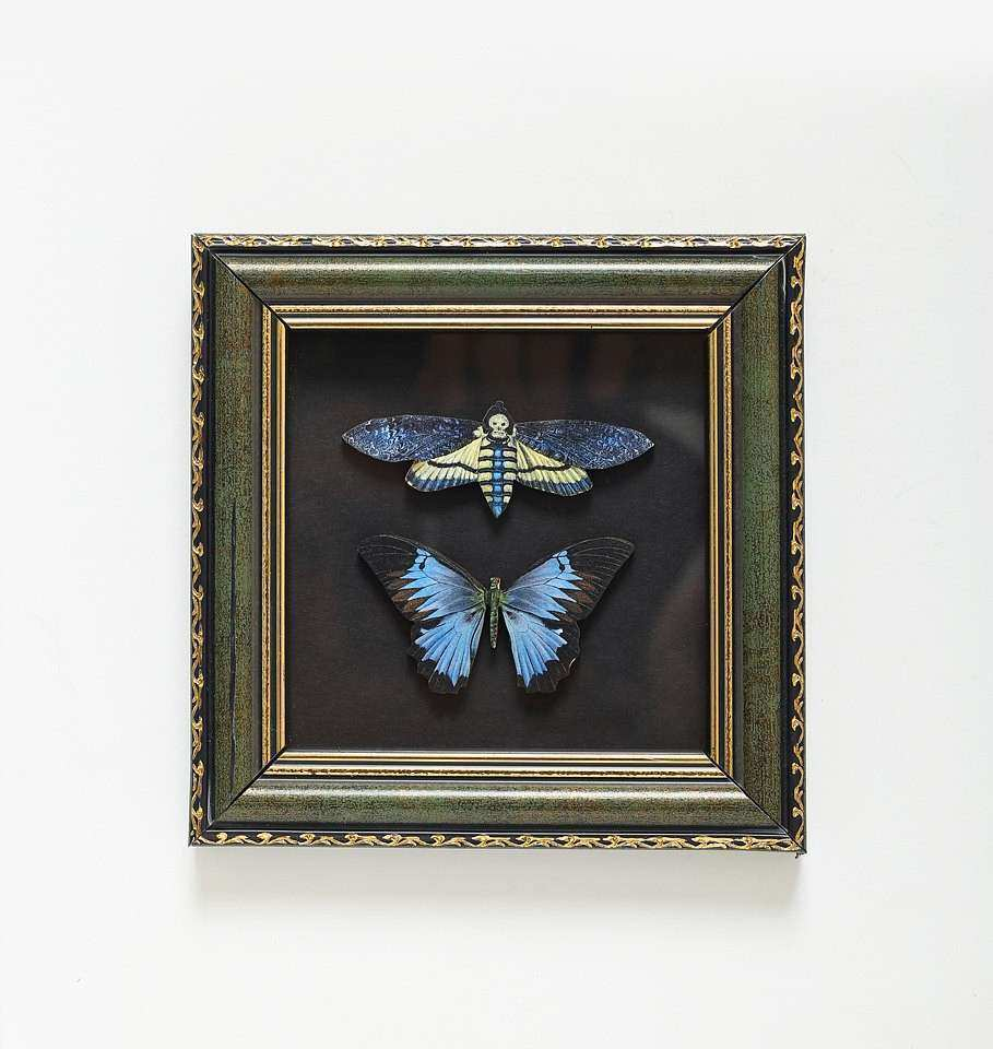 framed wooden butterfly Wall decor Collectibles Wall art