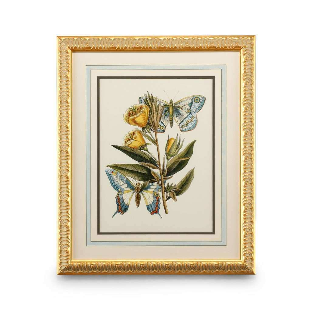Butterfly Framed Wall Art New the Well Appointed House Luxuries for the Home the