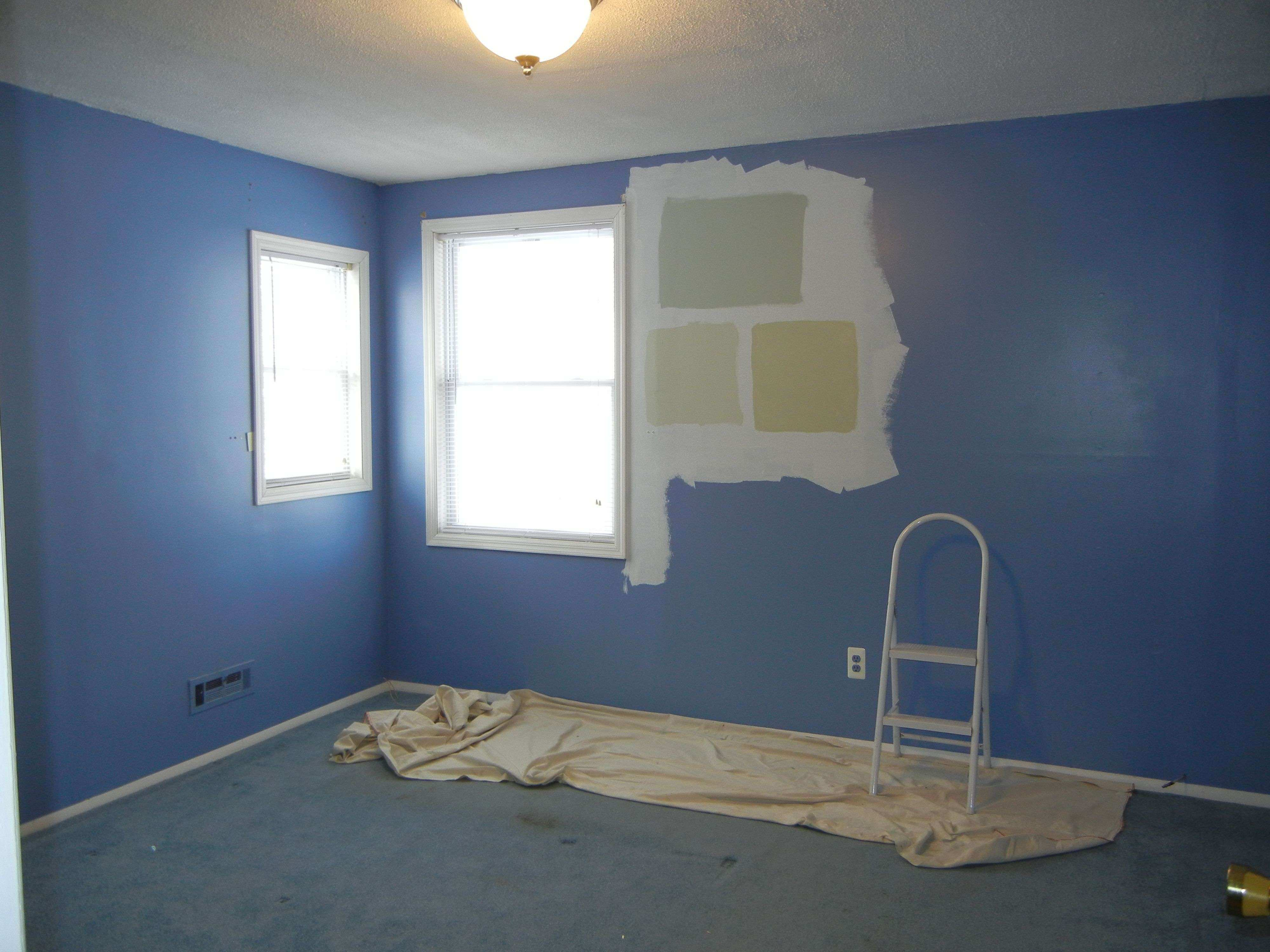 what color carpet goes with blue walls