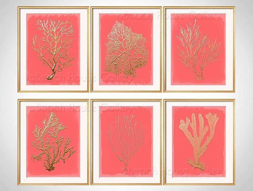 Coral Colored Wall Decor Unique Coral Wall Art Gold Coral Print Set Of 6 Coral  Art