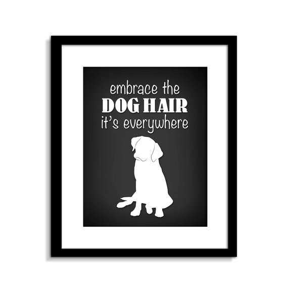 Good Dog Wall Decor Luxury Funny Dog Wall Art Funny Dog Sign Embrace The Dog  Hair Dog
