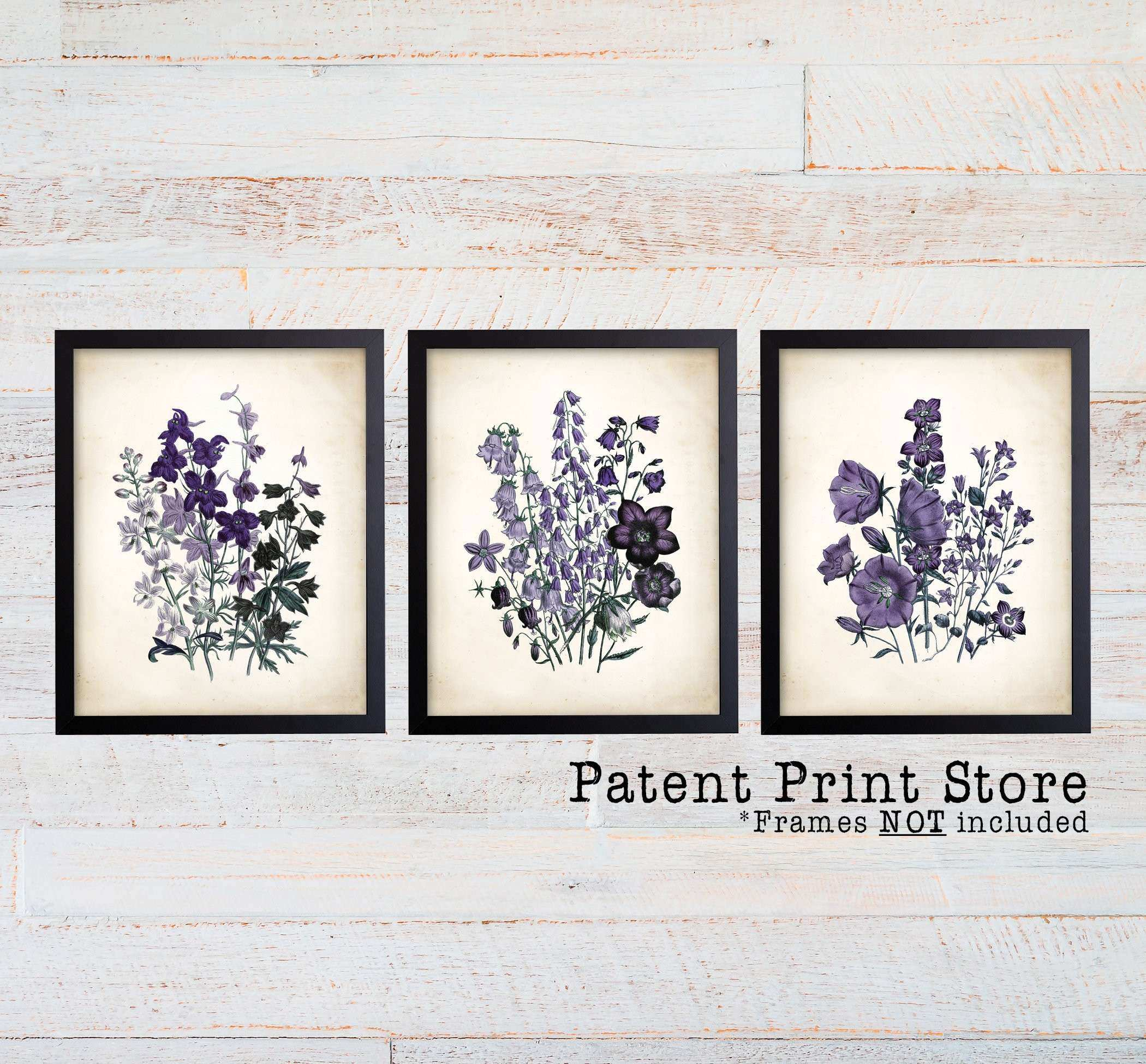 Purple Botanical Art Prints Purple Flower Prints Flower Wall Art