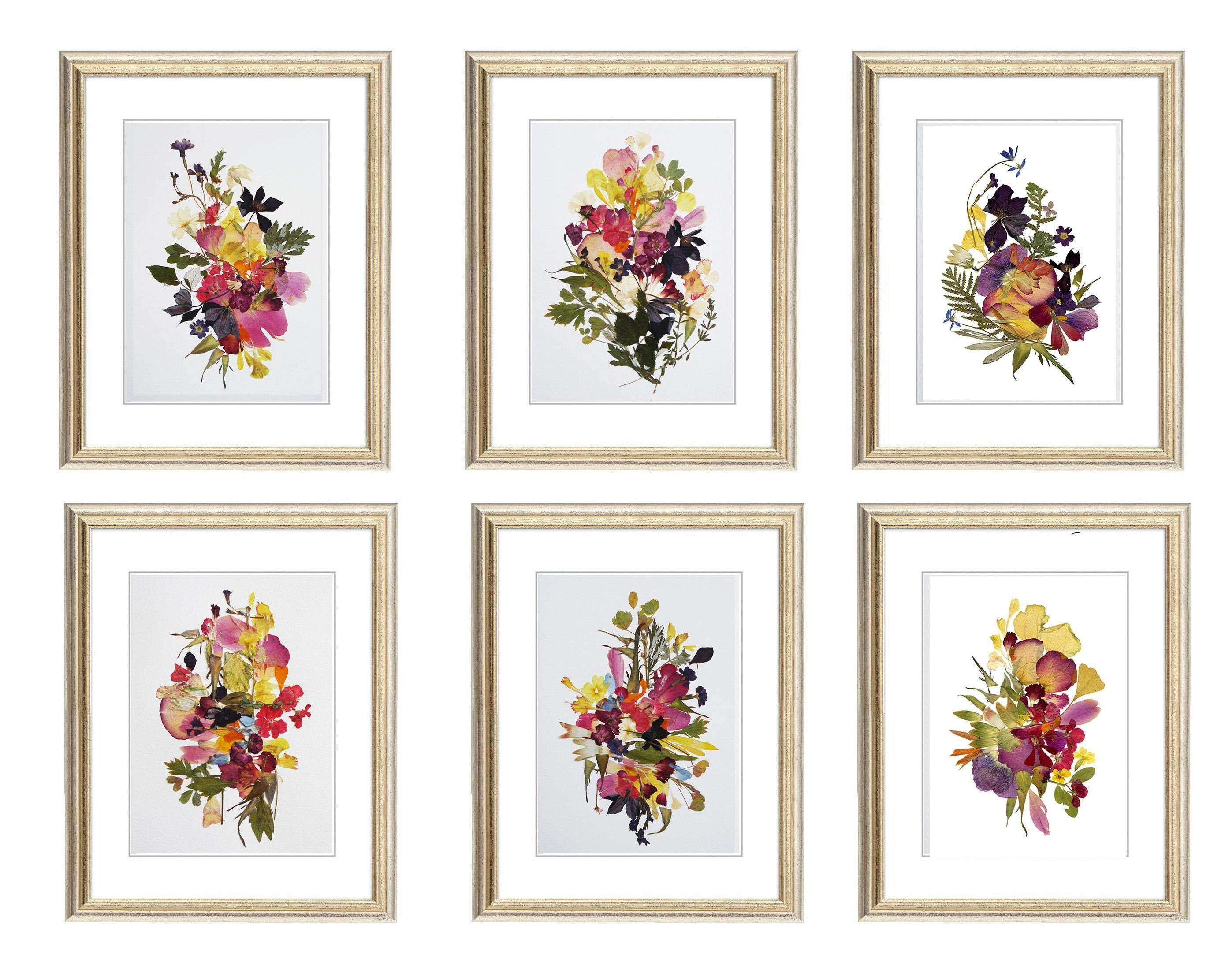 Set of 6 prints 11x14 Botanicals Prints Herbarium Pressed flower art