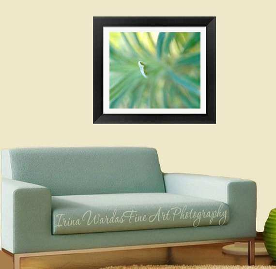 Framed Fine Art Abstract Nature graphy