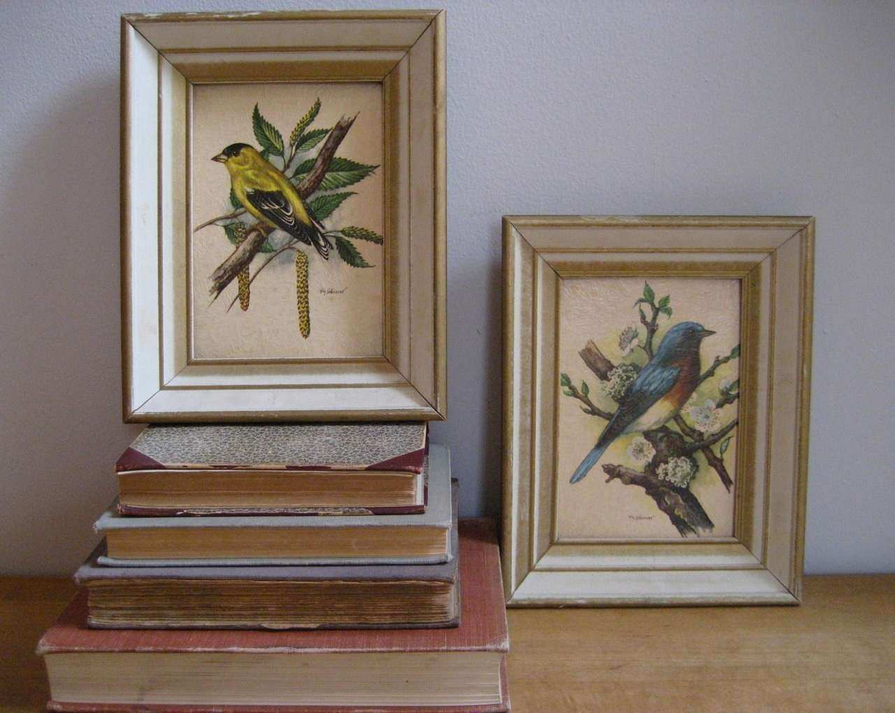 Vintage Pair of Framed Bird Prints