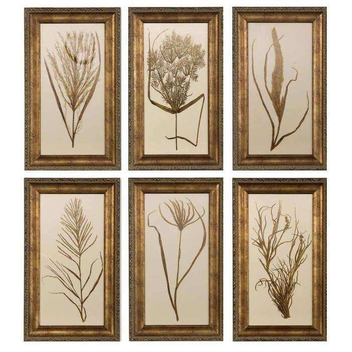 Uttermost Wheat Grass by Grace Feyock 6 Piece Framed