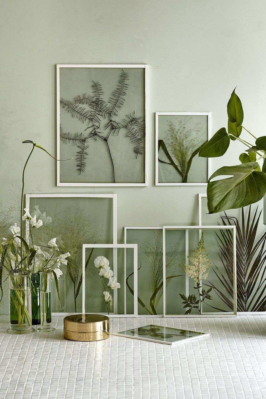 Framing dried plants and flowers in clear glass frames