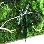 Green Framed Wall Art Elegant Naturally Beautiful Projects Made With Real Moss Of Green Framed Wall Art