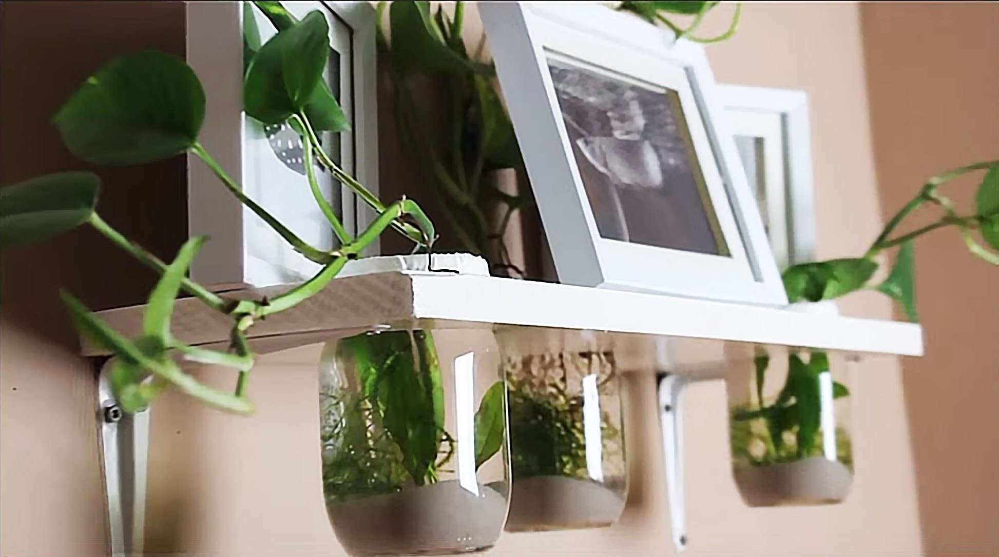 HOW TO Hang on the wall AQUARIUM TUTORIAL