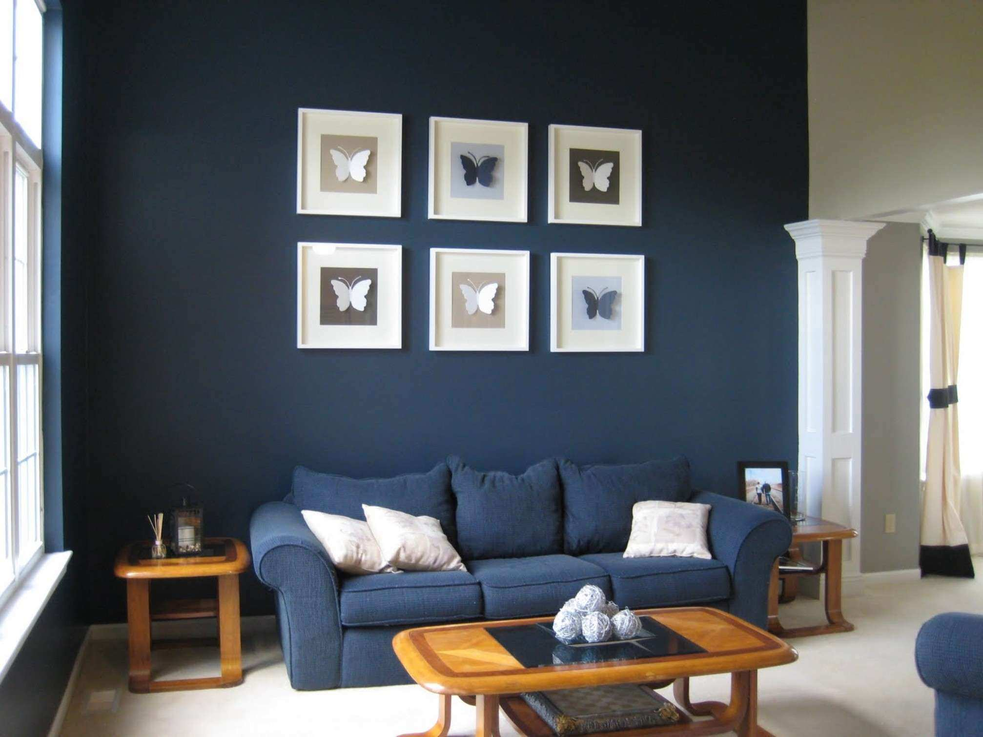 Dark Blue Living Room Decorating Idea With White Cushion