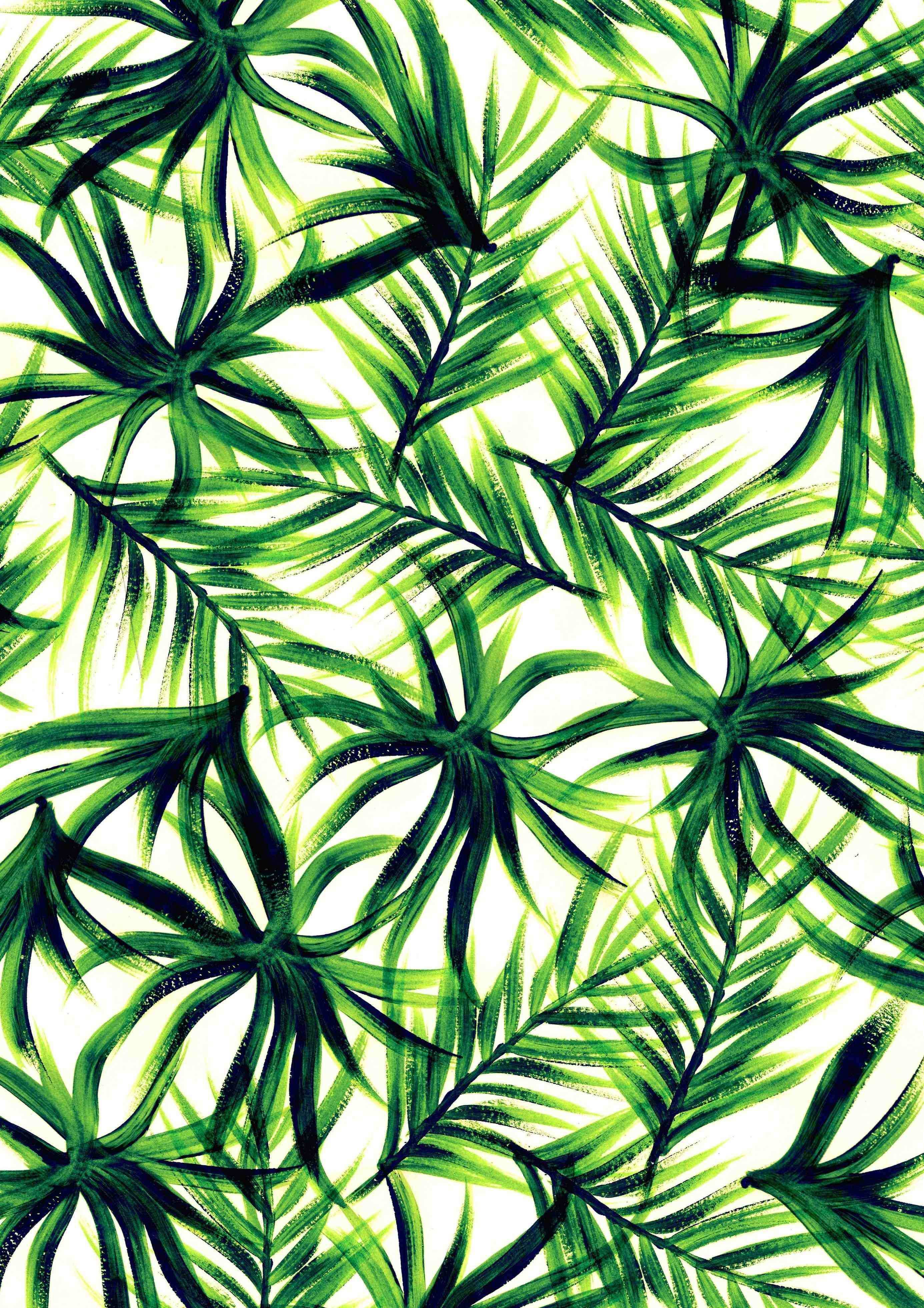 Drawn palm tree background Pencil and in color drawn