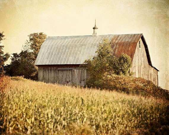 Rustic Barn Landscape Autumn Wall Art by LisaRussoFineArt