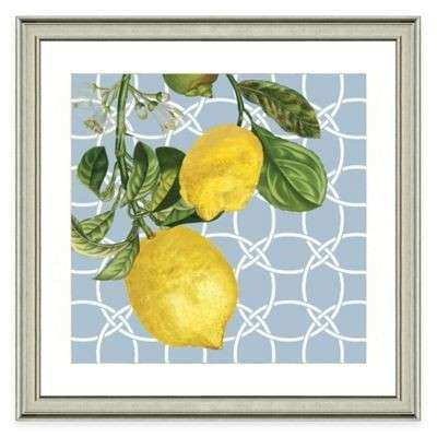 Buy Framed Giclée Lemon Grouping II Print Wall Art from