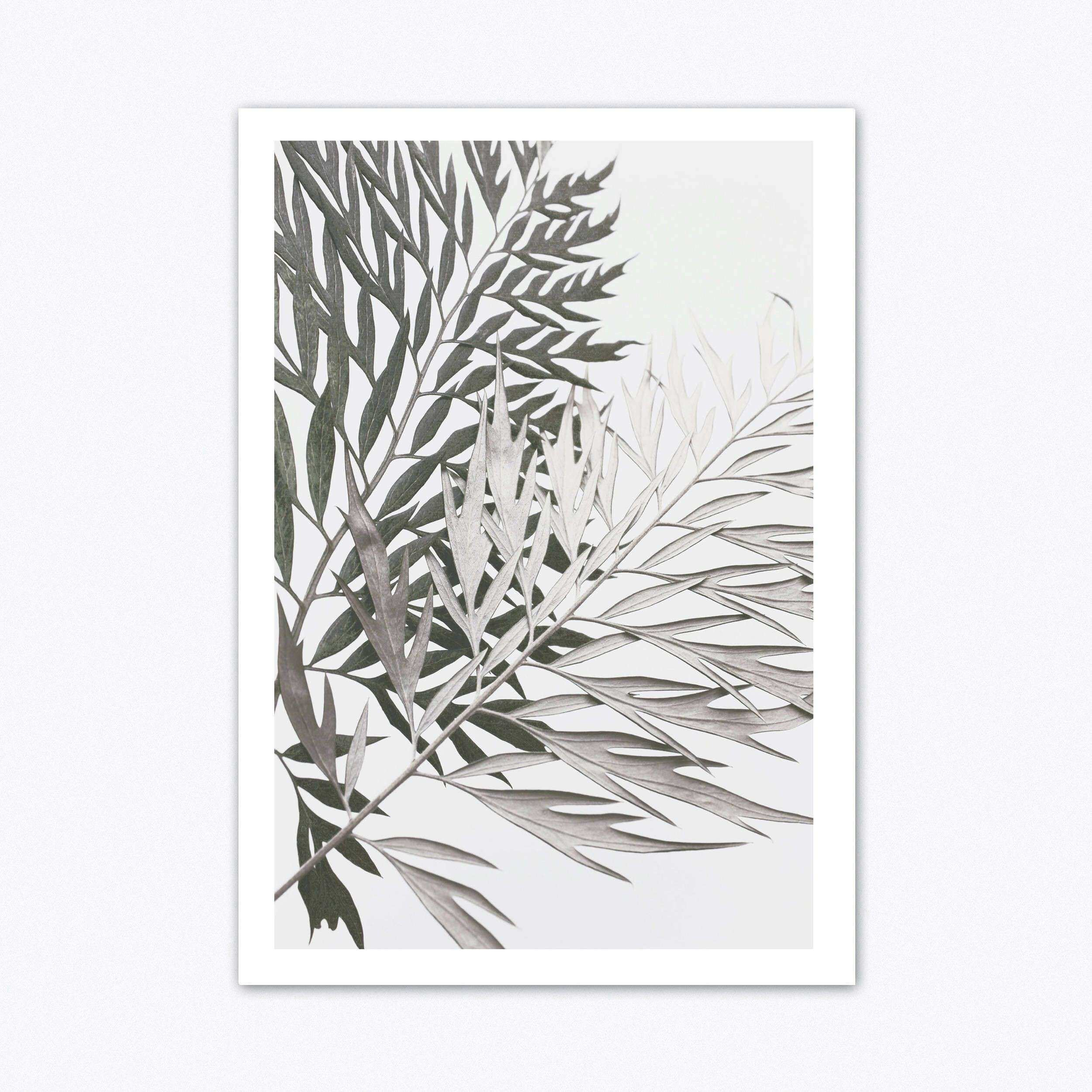 Neutral Wall Art Tropical Wall Art Botanical Print Scandinavain