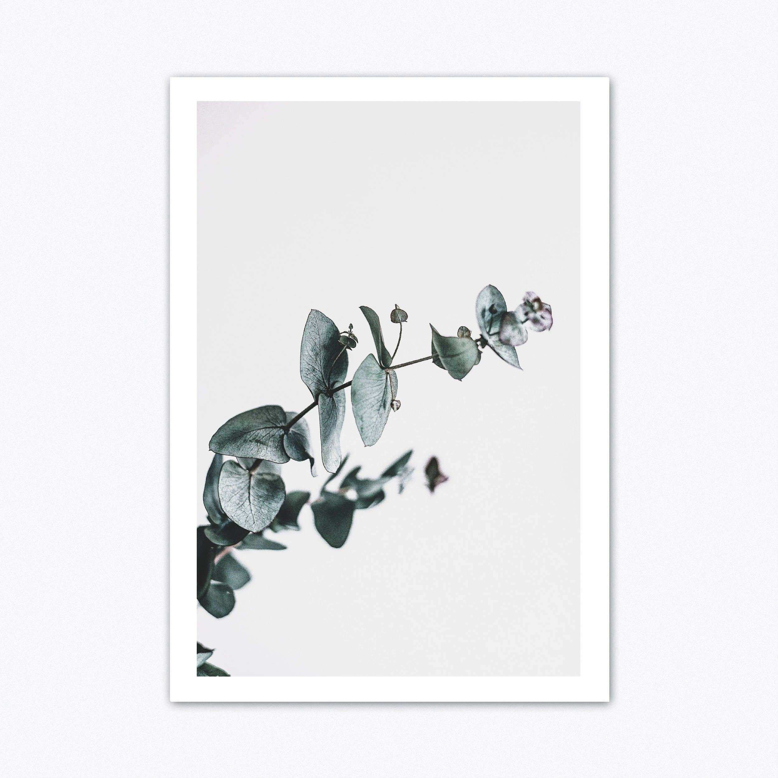 Neutral Wall Art Eucalyptus Print Botanical Print Scandinavain