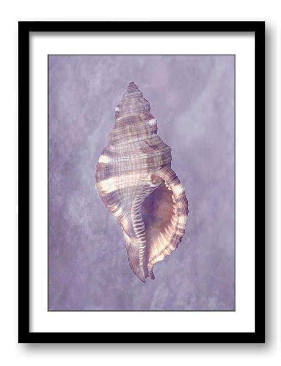 Bathroom Wall Art Purple Lilac Seashell Shell Print Elegant