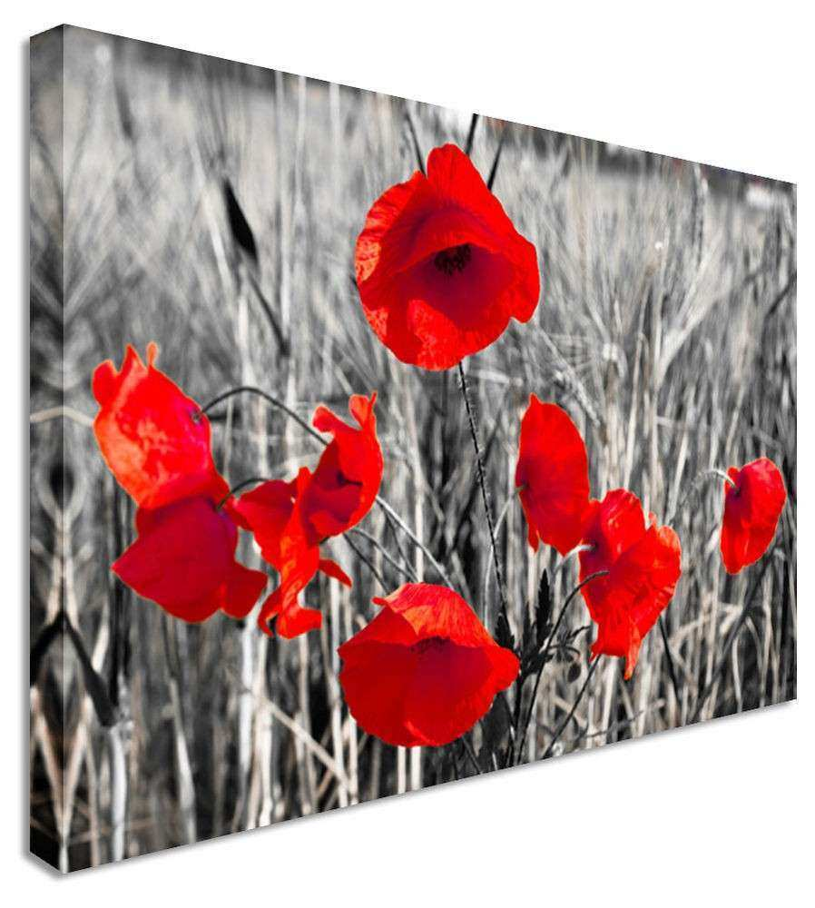 Red Black And White Wall Decor Inspirational Poppy Red Black White