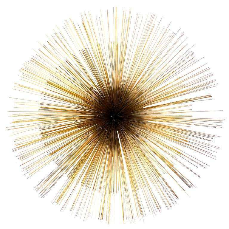 Sea Urchin Wall Decor Awesome A Sea Urchin Brass Wall Sculpture by ...