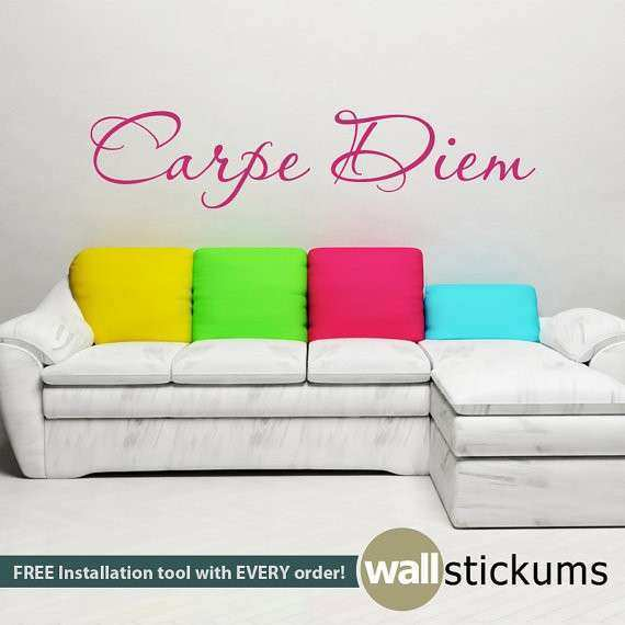 Wall Decal Carpe Diem Quote College Dorm Girls Boys