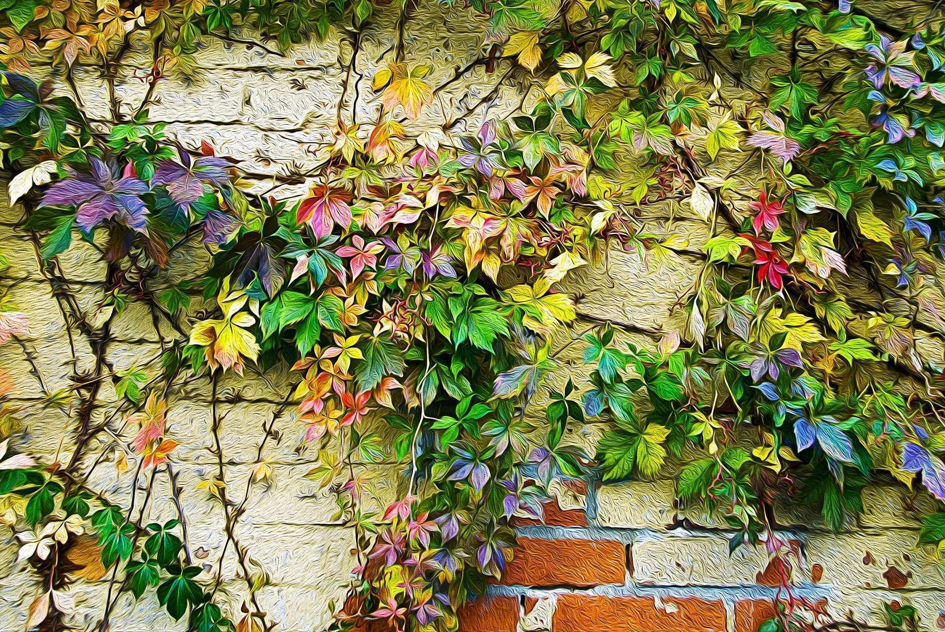 leaves ivy wall autumn flowers paint picture HD wallpaper