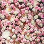 Wall Pictures With Flowers Fresh Flower Wall Places To Visit Pinterest Of Wall Pictures With Flowers