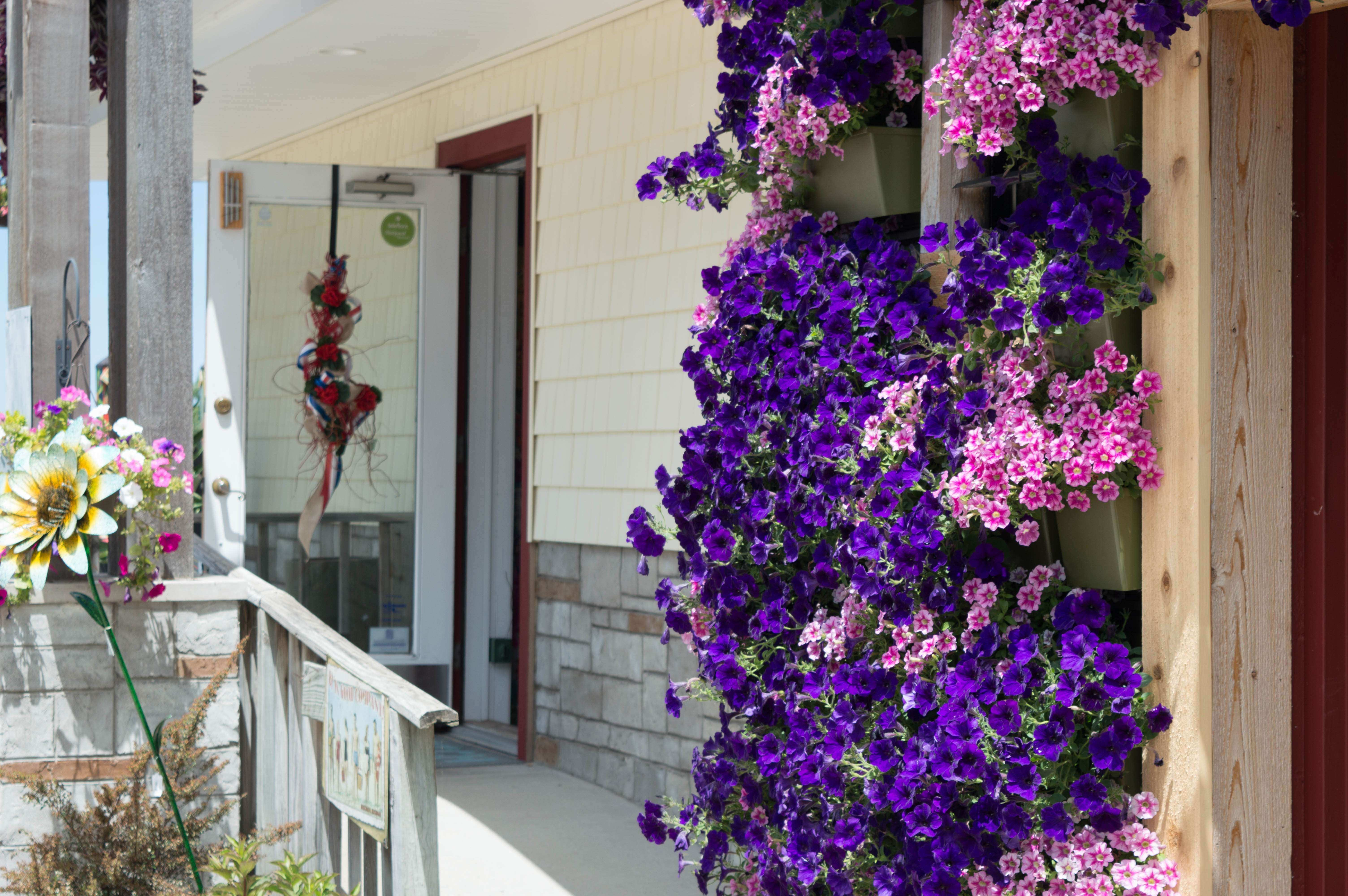 New Living Wall Added to Wasserman s Flowers & Gifts of Muskegon