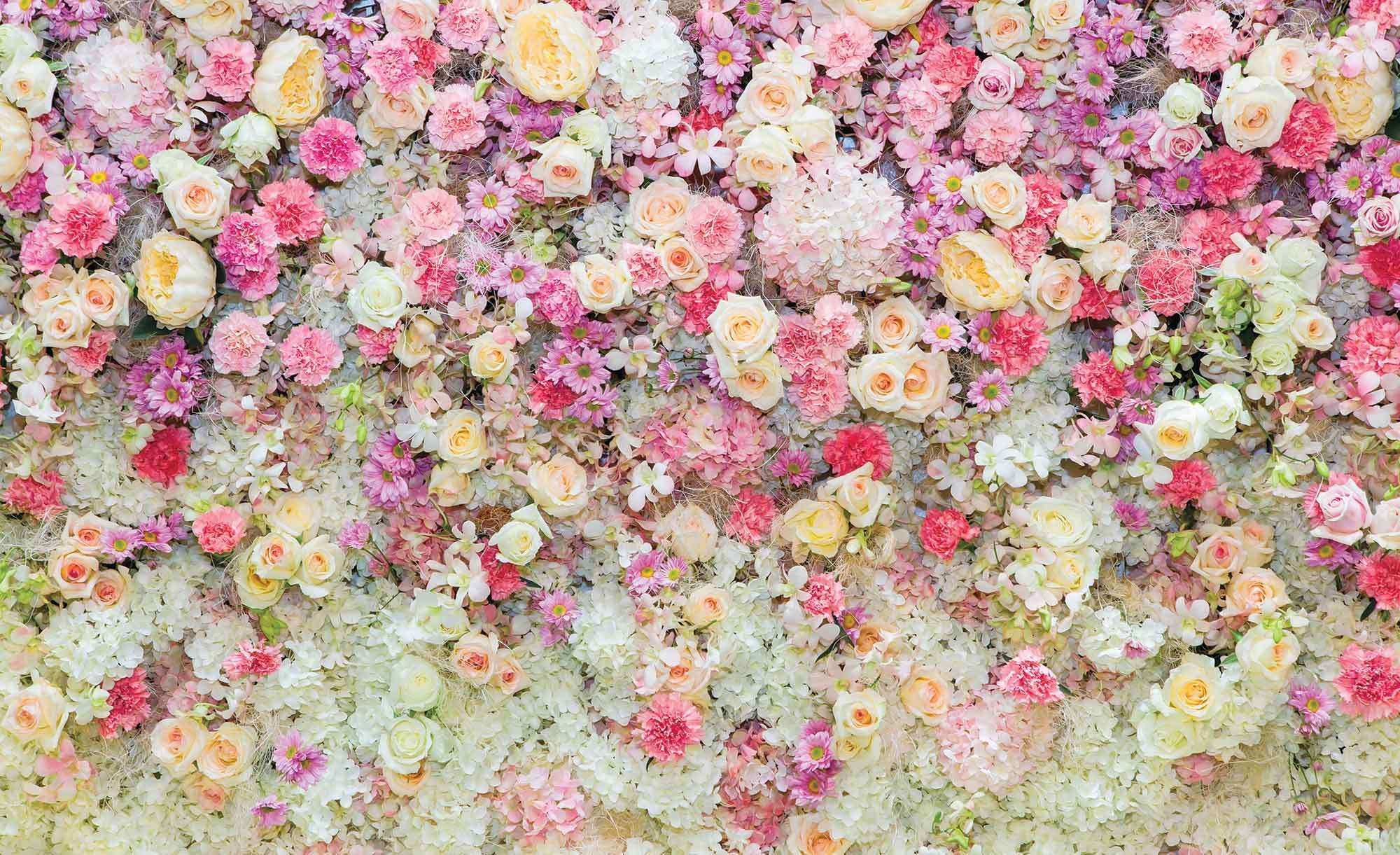 Wall Pictures With Flowers Lovely Wall Mural Photo Wallpaper Xxl